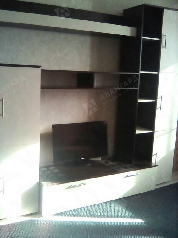 2-комнатная квартира, Большевиков пр-кт, 2 - фото 2