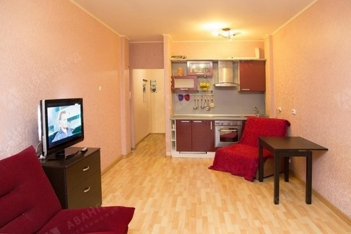 1-комнатная квартира, Туристская ул, 10к1 - фото 2