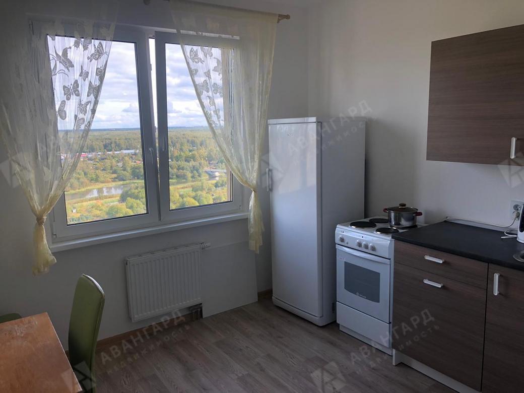 1-комнатная квартира, Муринская дор, 14 к3 - фото 2