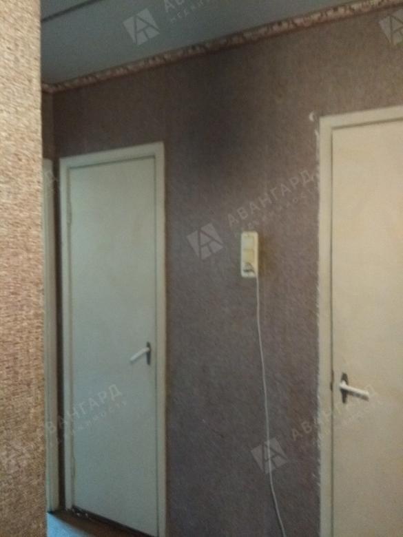 2-комнатная квартира, Ветеранов пр-кт, 114к3 - фото 1