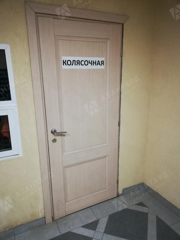 1-комнатная квартира, Дачный пр-кт, 21к1 - фото 15