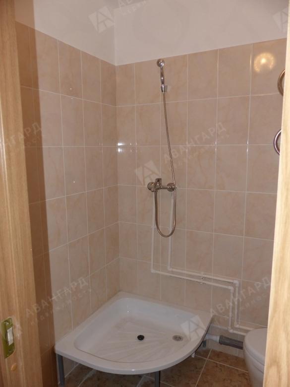 1-комнатная квартира, Заречная (Горелово тер.) ул, 19к1 - фото 2