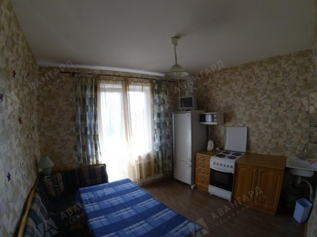 1-комнатная квартира, Савушкина ул, 133к1 - фото 2