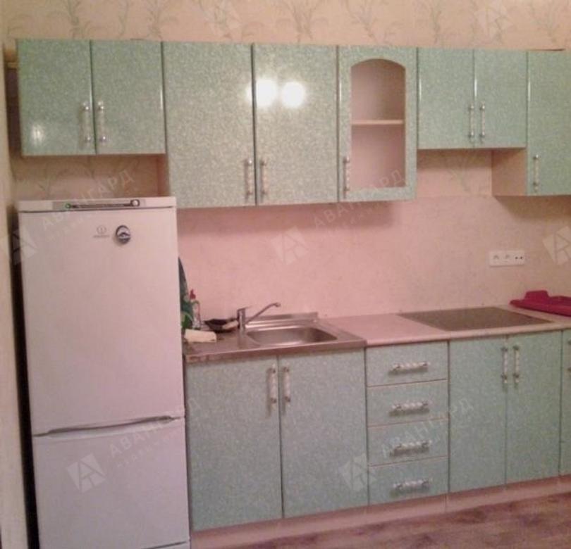 1-комнатная квартира, Дунайский пр-кт, 24 - фото 2
