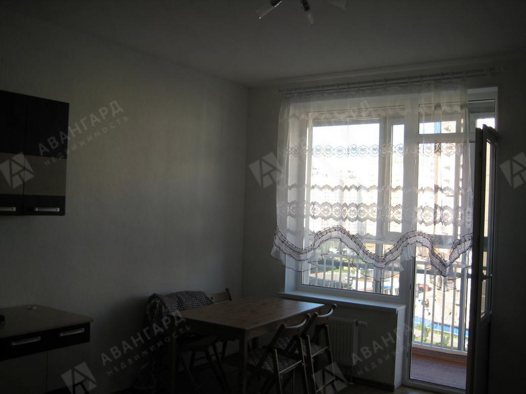 1-комнатная квартира, Туристская ул, 22литА - фото 2