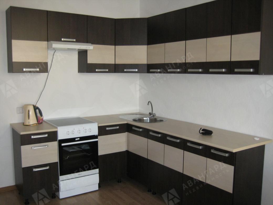 1-комнатная квартира, Туристская ул, 22литА - фото 1