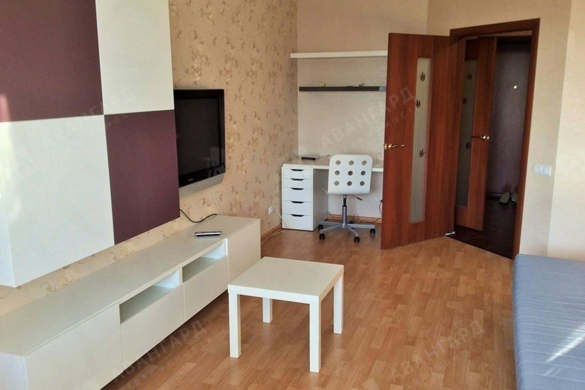 1-комнатная квартира, Михаила Дудина ул, 25к1 - фото 2