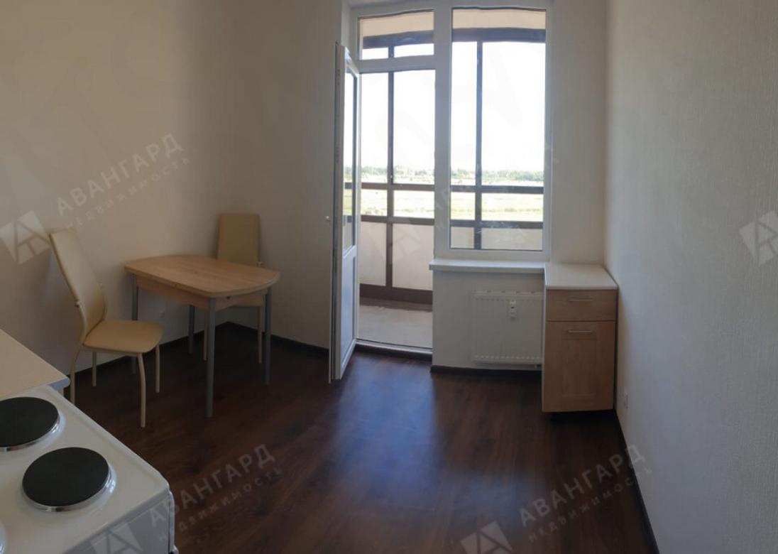 1-комнатная квартира, Ветеранов пр-кт, 171к2 - фото 2