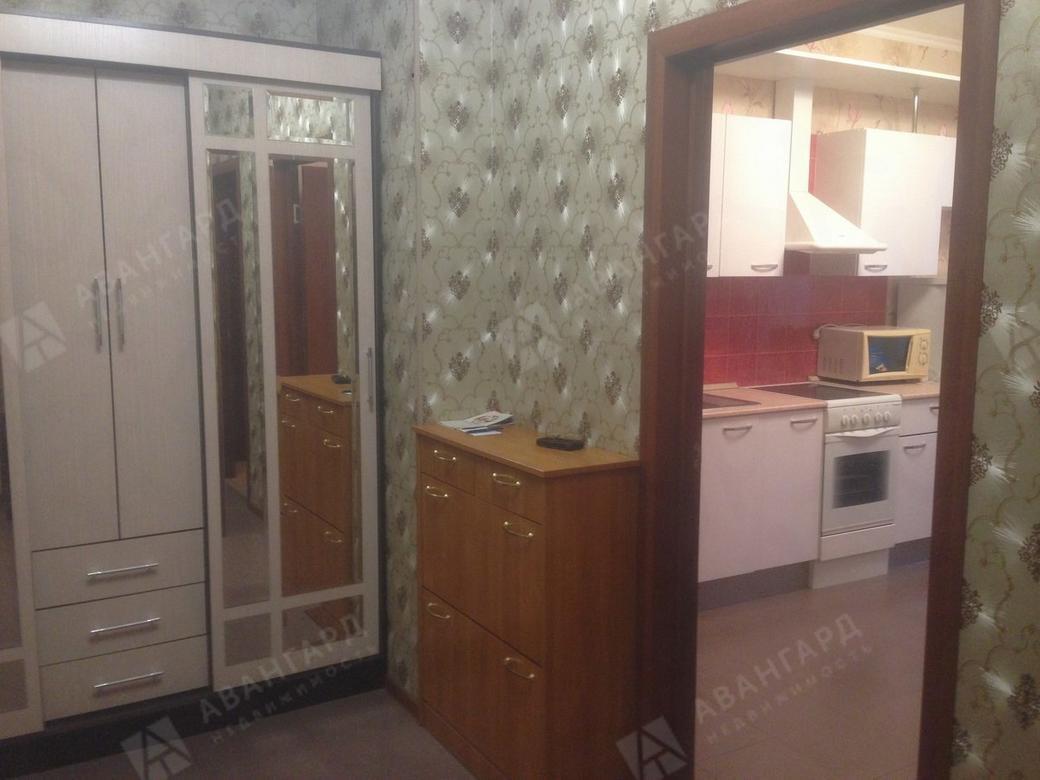 1-комнатная квартира, Луначарского пр-кт, 11к1 - фото 2
