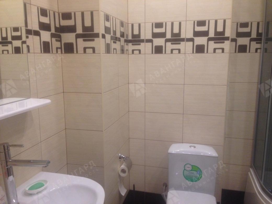 1-комнатная квартира, Луначарского пр-кт, 11к1 - фото 15