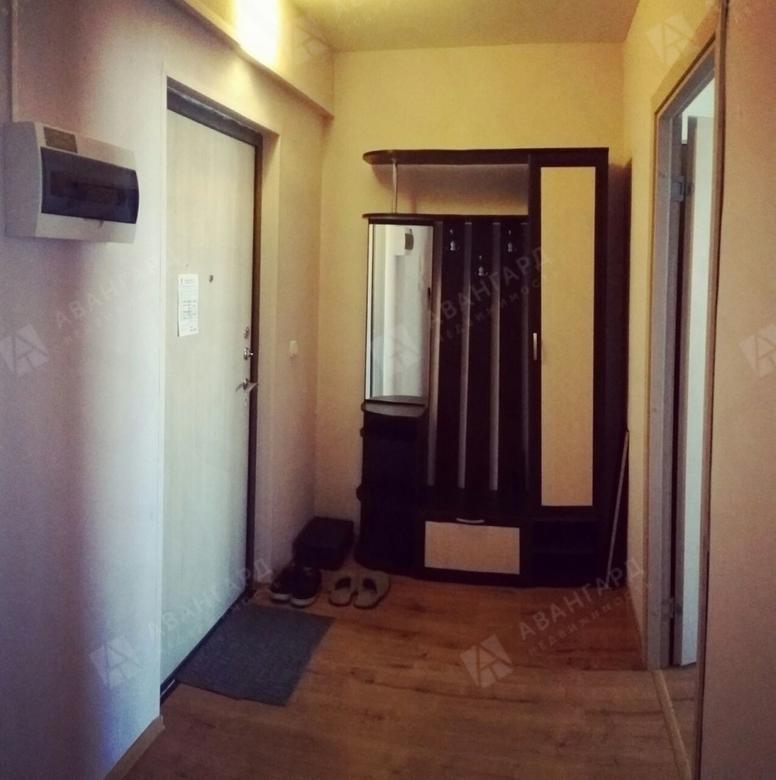 1-комнатная квартира, Вадима Шефнера ул, 12к1 - фото 7