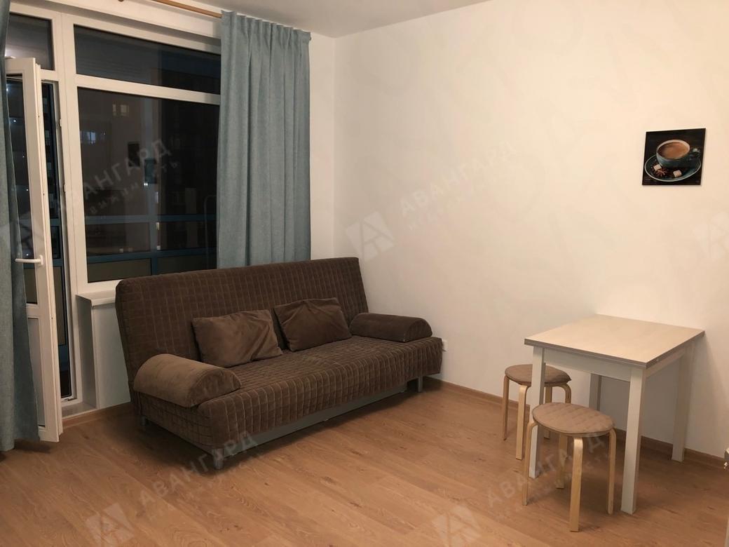1-комнатная квартира, Арцеуловская аллея, 23к1 - фото 2