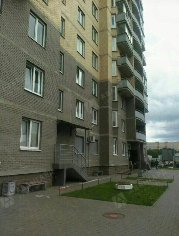 1-комнатная квартира, Непокорённых пр-кт, 49к2 - фото 19